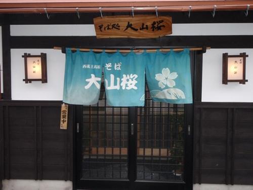 大山桜1.jpg
